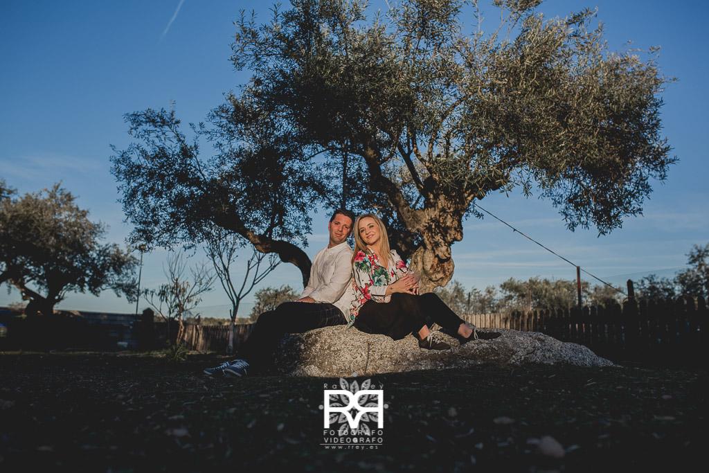 Rrey-1024-72-MA-141- RF 1633